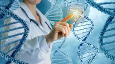 How Does the Body Use DNA as a Blueprint? image